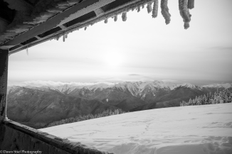 hurricane-ridge-5