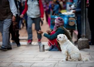 Kathmandu 2017-11-22