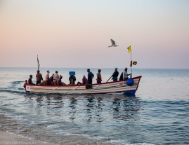 marari beach-10